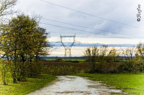 lumiere-electrique-publication_web